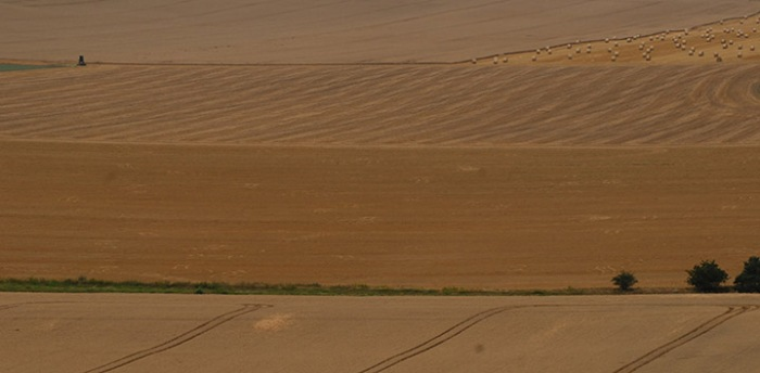 Agricultural landscape in Germany. Credits: Guy Pe'er