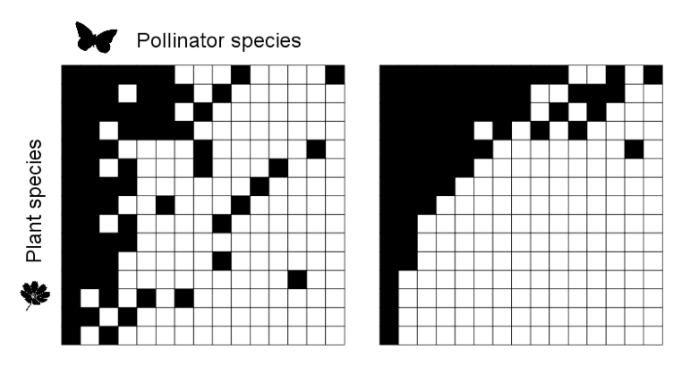Figure 1: Two plant-pollinator networks with different levels of nestedness. Black squares indicate interactions between plant species (rows) and pollinator species (columns). The interaction matrix on the right is more nested than the one on the left because most of its specialized species interact with subsets of the interaction partners of more generalized species.